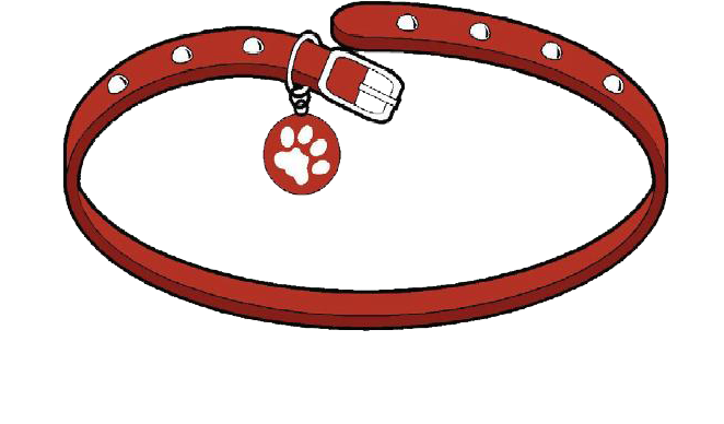 Whole Pet Veterinary Clinic